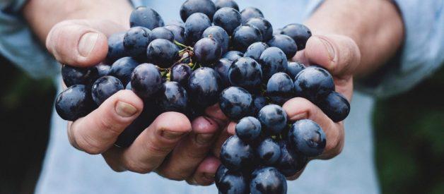 13 Loại thực phẩm chống viêm tốt nhất