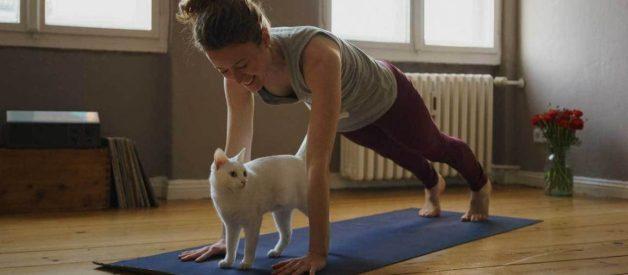9 Cách giảm mỡ cánh tay