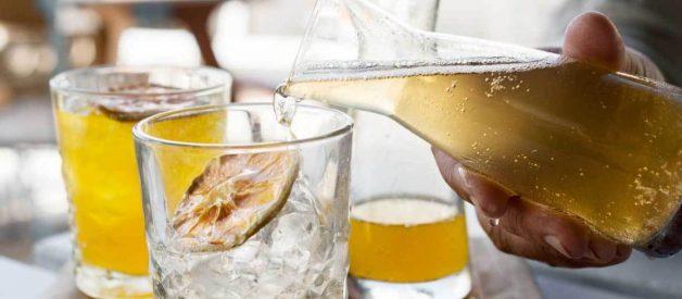 5 tác hại của việc uống trà Kombucha quá nhiều