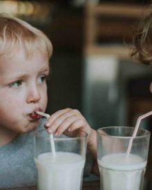 Những tác dụng của sữa tươi