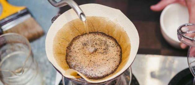 Nấm mốc Mycotoxin trong cà phê