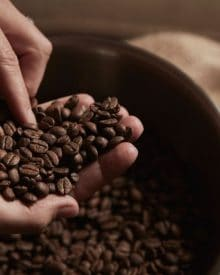 Có thể ăn hạt cà phê không?