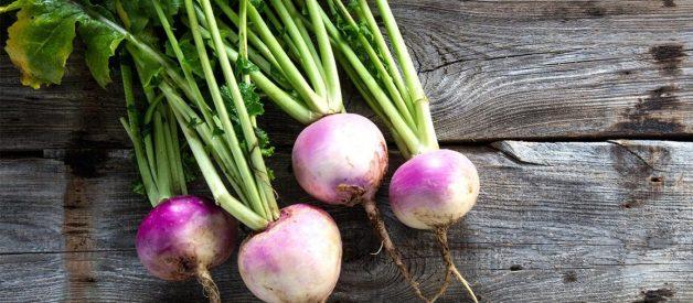 Thành phần dinh dưỡng và lợi ích của củ cải!