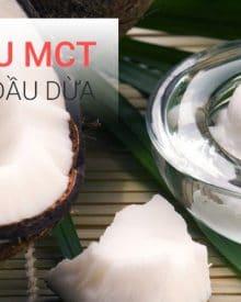 Sự khác biệt giữa dầu MCT và dầu dừa